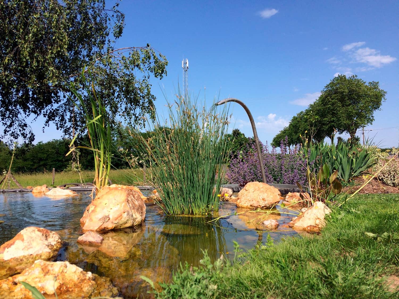 Création d'un bassin d'eau